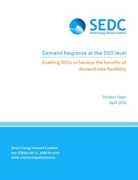 Demand Response at the DSO level