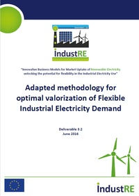 Adapted methodology for optimal valorization of Flexible Industrial Electricity Demand