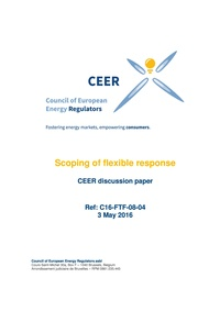 Scoping of flexible response CEER discussion paper