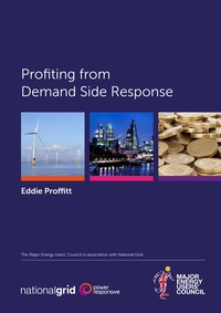 Profiting from Demand Side Response