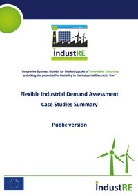 Flexible Industrial Demand Assessment: Case Studies Summary