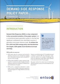 Demand Side Response - Policy Paper