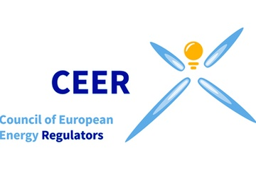Annual CEER Conference on Flexibility